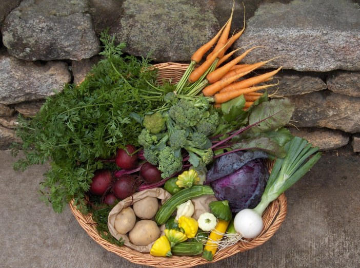 Signature basket with right crop