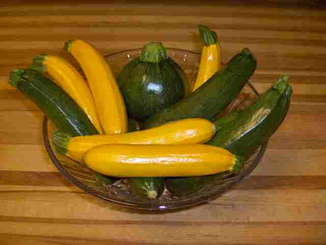 This image has an empty alt attribute; its file name is zucchini-in-yellow-green-eightball-hpim3460.jpg
