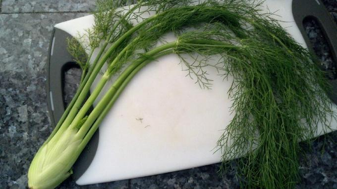 This image has an empty alt attribute; its file name is fennel.jpg